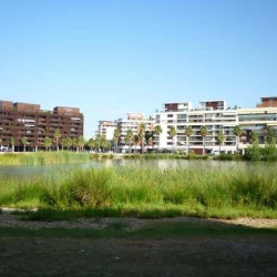 Location Local commercial Montpellier (34000)
