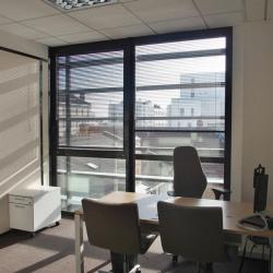 Location Bureau Lyon 7ème 785 m²