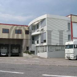 Location Local d'activités Corbas (69960)