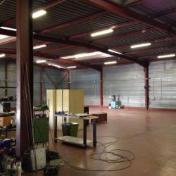 Vente Local d'activités Moissy-Cramayel 900 m²