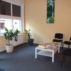 Location Local commercial Montigny-lès-Metz 173 m²