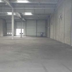 Location Local d'activités Gennevilliers 1066 m²