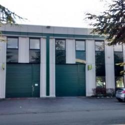 Location Local d'activités Limonest 611 m²