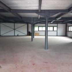 Location Local d'activités Saint-André-de-Cubzac 320 m²