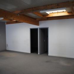 Location Local d'activités Le Plessis-Trévise 200 m²