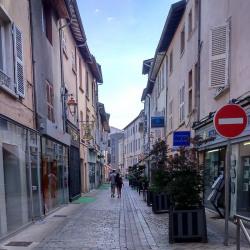 Vente Local commercial Neuville-sur-Saône 114 m²
