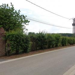 Vente Terrain Blessy 1600 m²