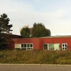 Location Local d'activités Erstein 2750 m²