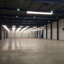 Location Local d'activités Cestas 12000 m²