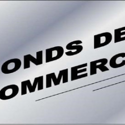 Vente Local commercial Castres 450 m²