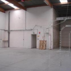 Location Bureau Émerainville 280 m²