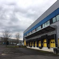 Location Local d'activités Le Mesnil-Amelot (77990)