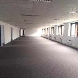 Location Bureau Lognes 724 m²