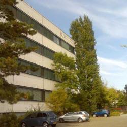 Vente Bureau Schiltigheim 5049 m²