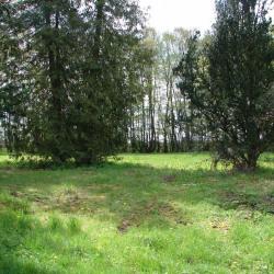Terrain  de 1000 m²  Montigny les Monts  (10130)
