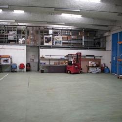 Vente Local d'activités Chennevières-sur-Marne 1959 m²