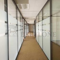 Location Bureau Paris 15ème 2954 m²