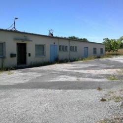 Location Local d'activités La Tour-Blanche 1200 m²