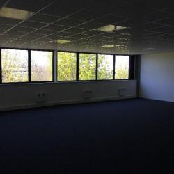 Location Local d'activités Lisses 1247 m²