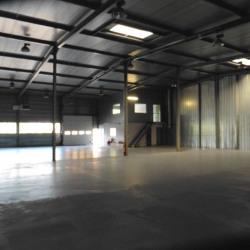 Location Local d'activités Hangenbieten 648 m²