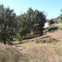 Vente Terrain Rocles (07110)