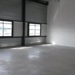 Location Local d'activités Montpellier 435 m²