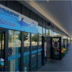 Location Local commercial Castelnau-le-Lez 48 m²