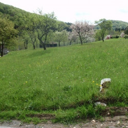 Vente Terrain Tendon 1278 m²