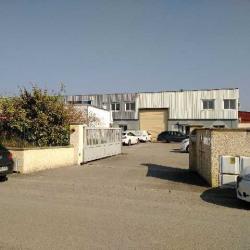 Vente Local d'activités Pusignan 1664 m²