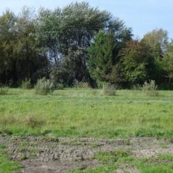 Terrain  de 500 m²  Carsan  (30130)