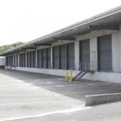 Location Entrepôt Forges-les-Bains 4560 m²
