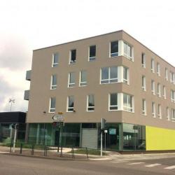 Vente Bureau Laneuveville-devant-Nancy (54410)
