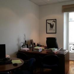 Location Bureau Nice 160 m²