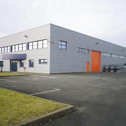 Vente Entrepôt Guichainville 1600 m²