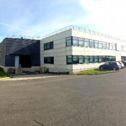 Location Local d'activités Chelles (77500)