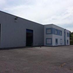 Location Local d'activités Quincy-Voisins 1332 m²