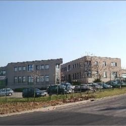 Vente Bureau Saint-Quentin-Fallavier (38070)