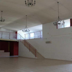 Location Local commercial Saint-Jean-de-Védas 395 m²