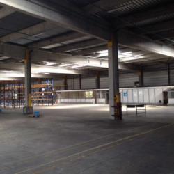 Vente Entrepôt Strasbourg (67100)