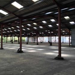 Vente Entrepôt Saint-Médard-en-Jalles 6806 m²