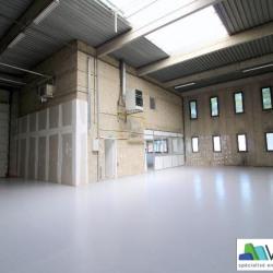 Location Local d'activités Collégien 326 m²