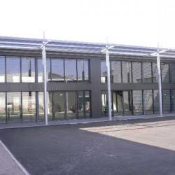 Location Local d'activités Toulouges 300 m²