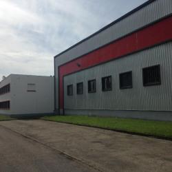 Location Local d'activités Saint-Herblain 1500 m²