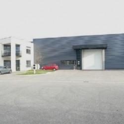Location Local d'activités Toussieu 921 m²