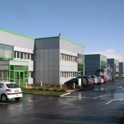 Location Bureau Castelnau-d'Estrétefonds 100 m²