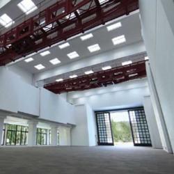 Location Bureau Saint-Rémy-lès-Chevreuse 5350 m²