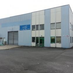 Location Local d'activités Chennevières-sur-Marne 1863 m²