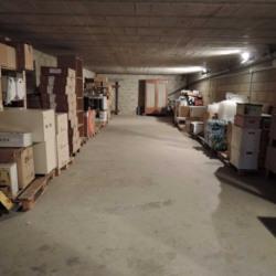 Location Local d'activités Thorigny-sur-Marne 333,34 m²