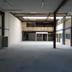 Location Local d'activités Le Blanc-Mesnil 594 m²