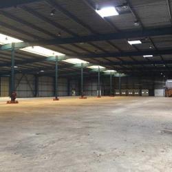 Location Entrepôt Cestas 7600 m²
